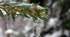 Снова осадки, но будет тепло: синоптики рассказали о погоде в выходные