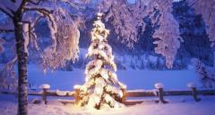 Снежно и морозно: синоптик порадовала прогнозом погоды в новогоднюю ночь
