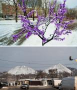 Терриконы в снегу, заснеженные парки: дончане показали утопающий в снегу город