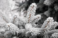Морозы и оттепель: стало известно, какая погода нас ожидает в выходные дни