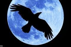 Очень страшное лунное затмение: чего опасаться в день кровавой Луны