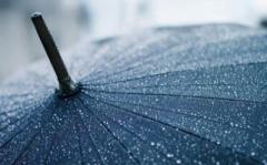 Дождь и +14: синоптики дали неожиданный прогноз погоды на начало недели