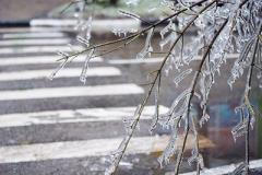 Гололед и не только: синоптики предупредили об ухудшении погоды