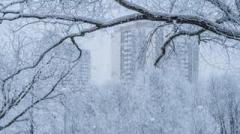 """В Украину идет """"арктика"""": синоптик рассказала, когда и где ударят морозы"""