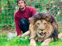 В Чехии лев загрыз своего владельца