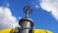 Транзит газа: Украинские власти разработали план «Б»