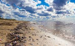 Пластиковые отходы возрастут вдвое к 2030 году: в чем опасность для жителей Земли