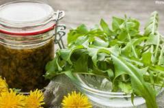 Сироп из одуванчика помогает при болезнях печени, почек и желудка: рецепт