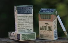 В ЮАР создали первые в мире эко-сигареты