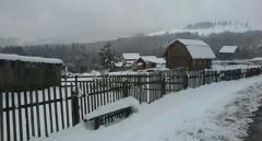 Зима вернулась: на западе Украины прошел сильнейший снегопад