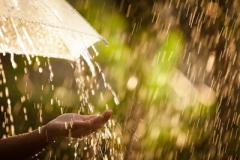 Синоптики рассказали, что случится, если сегодня пойдет дождь