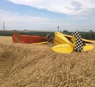 В Полтавской области разбился легкомоторный самолет: есть жертвы