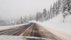В Карпатах выпал летний снег: опубликовано видео