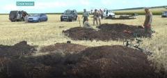 На Донетчине нашли останки 15 бойцов времен Второй мировой войны
