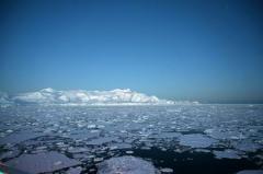 В Антарктике зарегистрировали рекордно высокую температуру