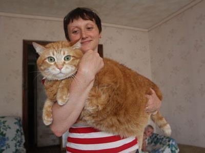 В Донецке живет кот-