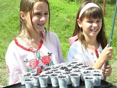 Фестиваль черники в Закарпатье: ели ягоды и пили яфиновку (ФОТО)