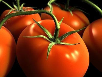 http://donbass.ua/multimedia/images/news/original/2010/08/26/pomidor.jpg