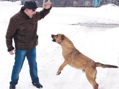 Олег Костюк показывает, как правильно защититься от злой собаки.