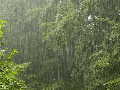 Погода в украине дождь гроза и жара
