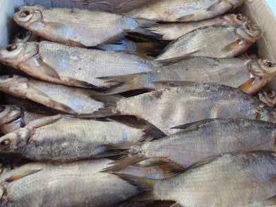 СЭС предупреждает: вяленая рыба - это катастрофа