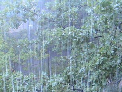 В украине установилась дождливая