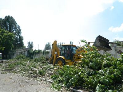 Вокруг стадиона в центре Артемовска идет настоящий лесоповал.