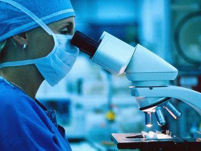 Исследователи нашли новый способ лечения рака
