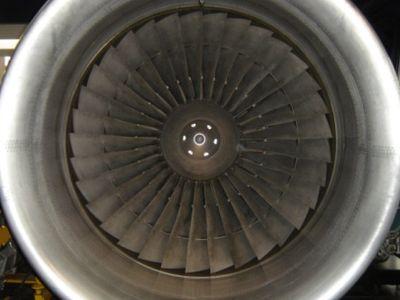 Инженера засосало в двигатель новой зеландии