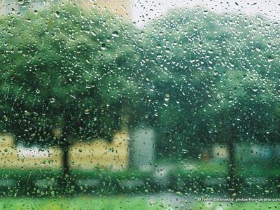 Прогноз погоды: в понедельник Украину накроют дожди