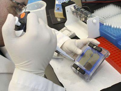 Мариупольцы стали меньше болеть кишечными расстройствами
