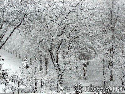 В Донецк возвращается зима