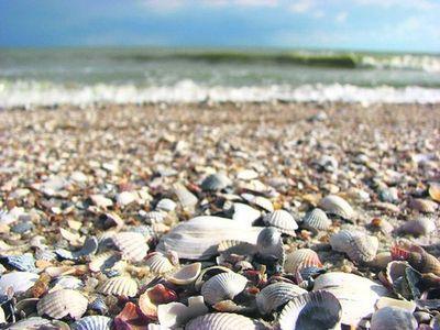 В Азовском море четверо суток искали рыбака