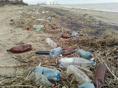 Отдыхающие завалили Мелекино мусором
