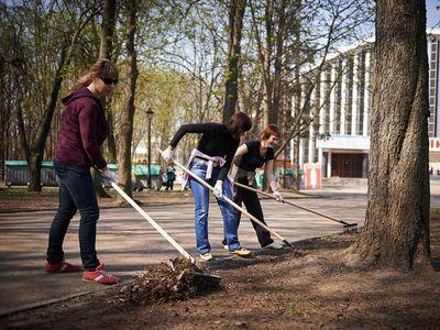 В Донецке высадили несколько тысяч деревьев и кустарников