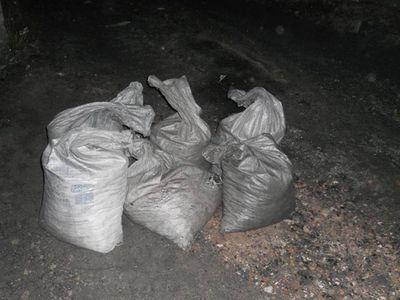 Женщина украла на станции 210 килограммов угля
