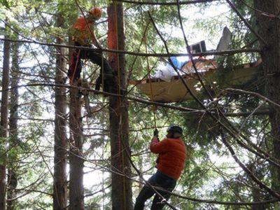 Изобретатель летающего стула застрял на дереве