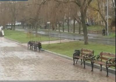 В Донецке вор после ограбления уснул на лавочке в парке (ВИДЕО)