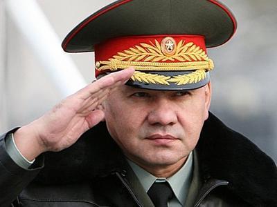 Украинские активисты взывают к министру обороны России Сергею Шойгу.