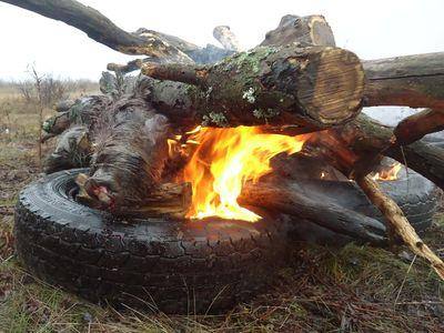 Первый пошёл: застреленное животное сжигают на костре.