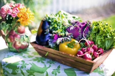 Садоводы и вредители - чья возьмёт?