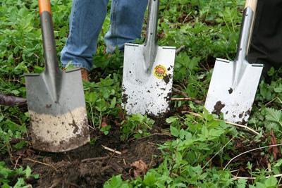 Обрабатываем почву: вспахать, взрыхлить или... залить