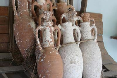 В Греции обнаружили древнейшее в мире вино