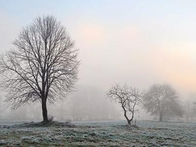 Погода в Украине 23 декабря: переменная облачность, без осадков