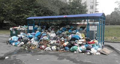 У Львові через сміття можуть припинити працювати школи та дитсадки