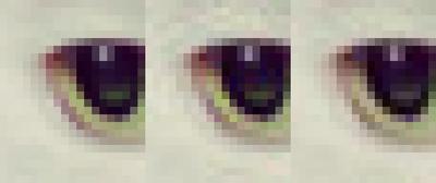 Google опубликовала новый алгоритм сжатия изображений