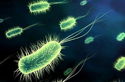 В Украине выявили опасное для жизни инфекционное заболевание