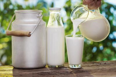 В Украине запретят продажу домашнего молока