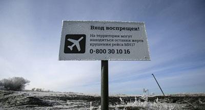 Дипломат: за сутки до теракта РФ вдруг закрыла свое воздушное пространство – этим все сказано
