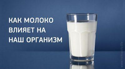 Как молоко влияет на организм человека